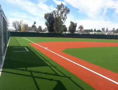 MIRACLE LEAGUE TURF